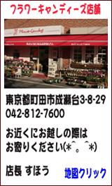 東京都 町田市 成瀬台 プリザーブドフラワー 花